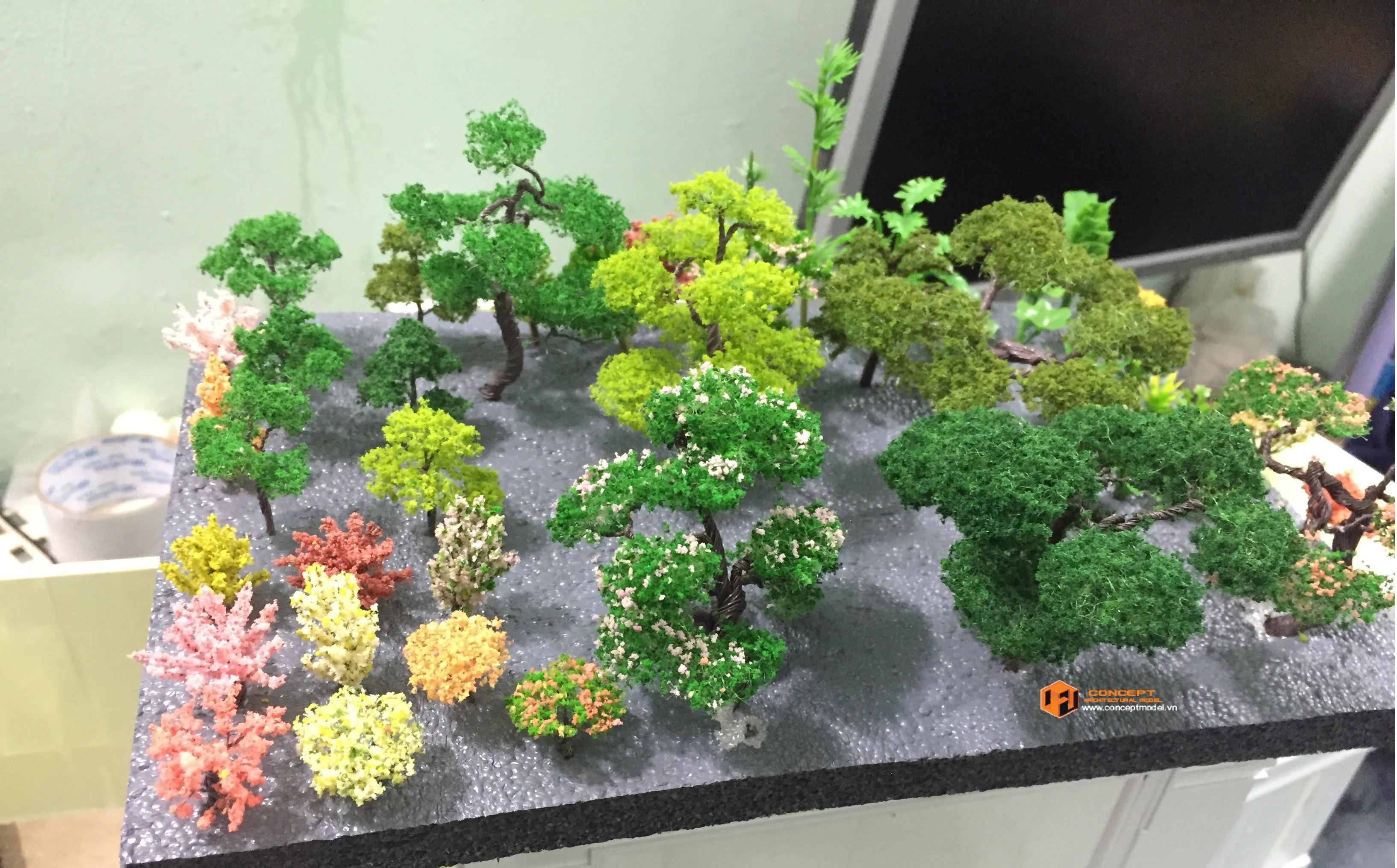 Mô hình cây